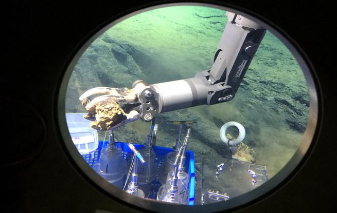 深潜马里亚纳海沟——海底世界见闻记