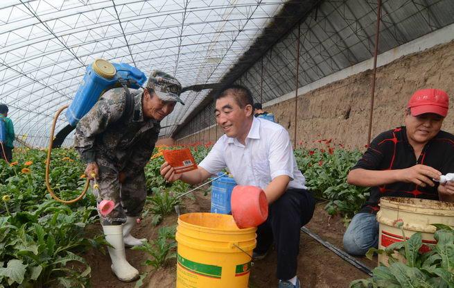 锦州义县:扶贫与扶志相结合 打赢脱贫攻坚战