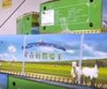 分羊啦!550箱蒙古国捐赠羊送至抗疫医务工作者[播放]